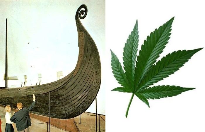 Древние скандинавы, викинги, уже знали о свойствах конопли.